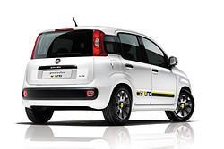 Fiat Panda Young von hinten